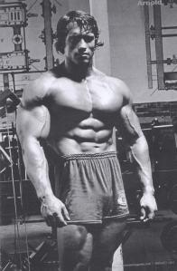 Arnold-Schwarzenegger-Physique-4