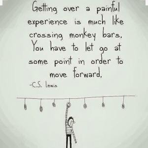 Good advice monkey bars