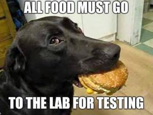Lab for testing
