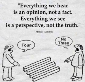 perspective vs Truth