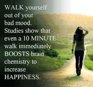 Wk 15 Walking