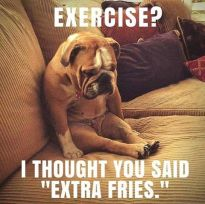 Wk 16 Exercise vs fries
