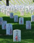 Wk 23 Graves_at_Arlington_on_Memorial_Day