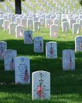 Wk 23 Graves_at_Arlington_on_Memorial_Day