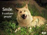 Wk 29 Smile